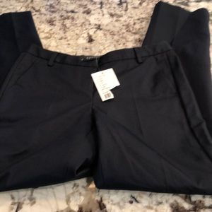Anthropologie Poleci navy ankle pant
